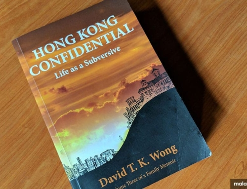 "The makings of a civil service mandarin: a review of ""Hong Kong Confidential"""