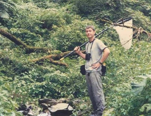 Book excerpt: Confessions of a Hong Kong Naturalist